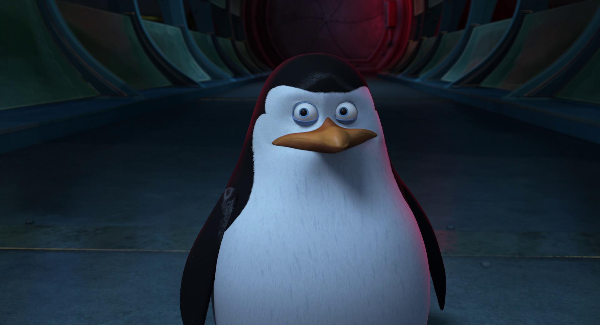 Пингвины Мадагаскара | BDRip 1080p | Лицензия